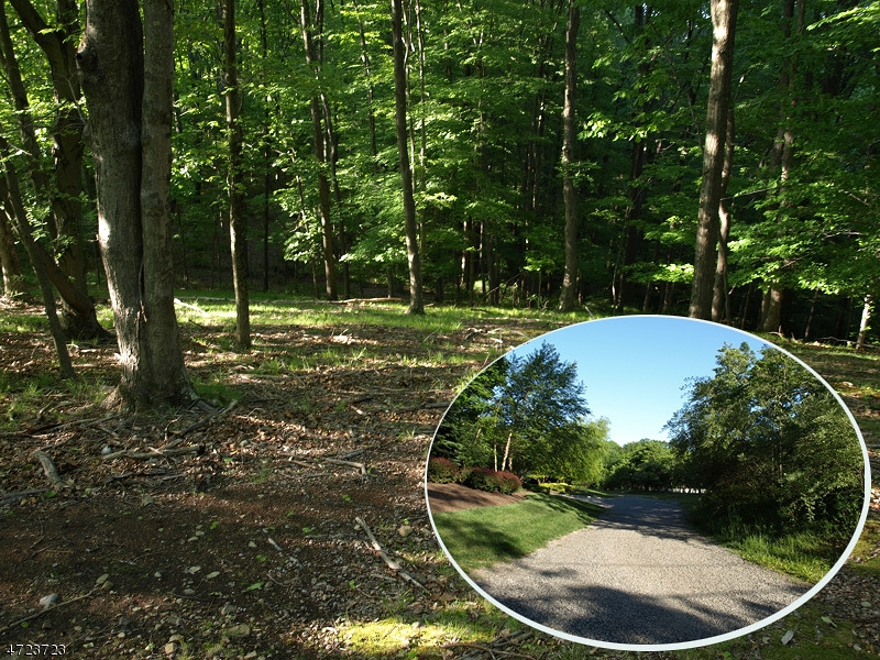 Magical woodland setting of 10 secluded and rolling acs w/600' river frontage, location at Peapack/Bernardsville border, accessed via long drive, mature flowering trees, amongst million $ estates.