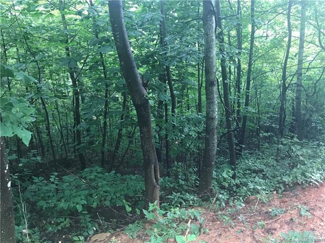 Wooded lot near Bat Cave, NC. Private and secluded. Some view with homeside clearing. Gentle topography and totally wooded. Deed restrictions to protect your investment.