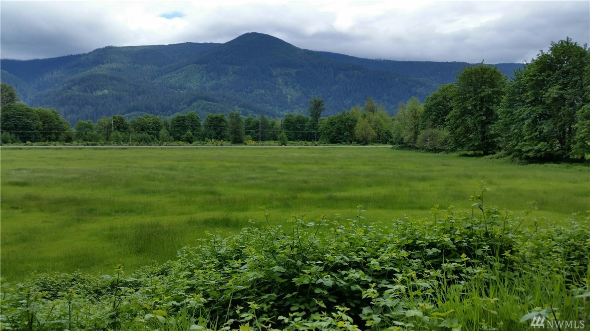 Beautiful 25.890 acres between Randle and Packwood.  Located on the North side of Hwy 12 which does not flood.  Appr 15 acres is flat pasture land that is currently hay producing.  Appr 7 acres is located north of Davis Creek Rd and has an amazing flat home building spot on top of flat rock outcropping, which provides beautiful views.  Access to upper 7 is from FS RD 63 and would require special use permit to build, road was previously constructed in 1990 with Permit that is now expired.
