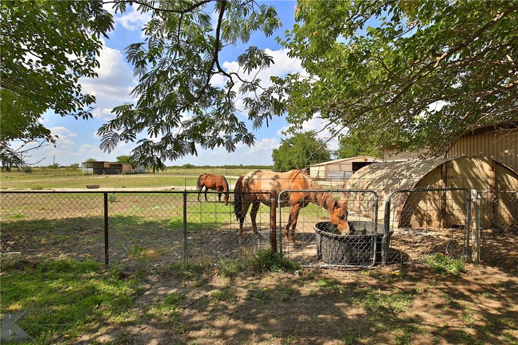244 County Road 157, Coleman, TX 76834
