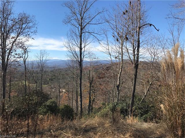 Come see some of the best views in WNC in this gorgeous, gated community.  Build your dream home here, minutes from downtown Hendersonville.  This community features hiking trails, waterfalls, creek, picnic areas, stocked fishing ponds, community park and pavilion.  This is the place to live the mountain lifestyle you have been dreaming of!