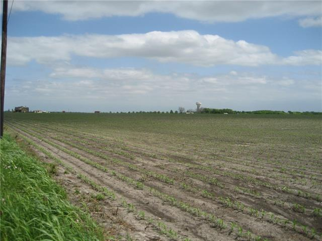 IDEAL INVESTMENT PROPERTY BETWEEN HUTTO AND TAYLOR JUST MINUTES OFF US 79.  GENTLE SLOPE TO TERRAIN MAKES FOR EASY DRAINAGE TO SMALL WATERWAY AT THE REAR OF PROPERTY.  RICH BLACKLAND FARM SUPPORTS YOUR INVESTMENT UNTIL TIME FOR DEVELOPMENT.