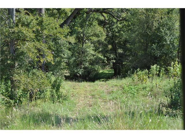 Want to be secluded? Here is approx. 20 acres with road frontage. Electricity and community water is in the area, buyer to verify availability. It has a nice size native grass pasture and partially wooded.  Come make it your own. The quiet neighborhood and country setting is a great place to call home. Restricted to NO MOBILE HOMES. Sellers are both Licensed Realtors in the State of Texas.