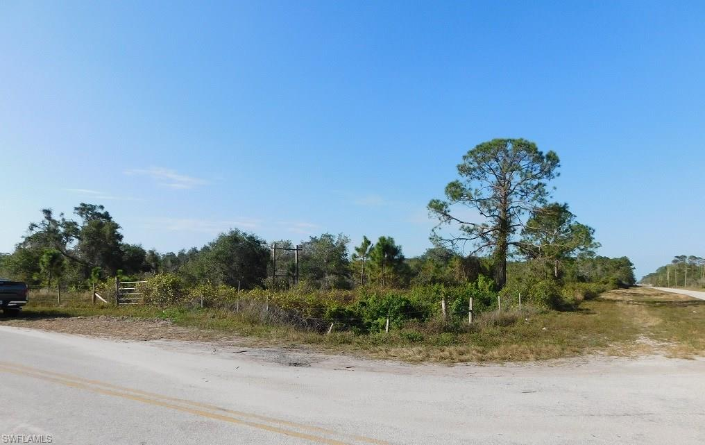 Loblolly Bay RD, LABELLE, FL 33935