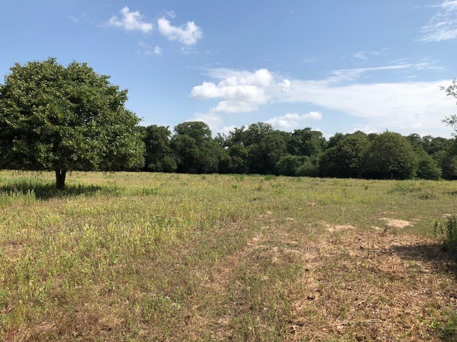 Wonderful 20 acre tract of land with meadows, trees, partial fence less than 5 miles from town..  20 acres of privacy with lots of options to locate your home.  Electric line and Lee County WSC water line run by this property  Just need to run the lines onto the property from the road.
