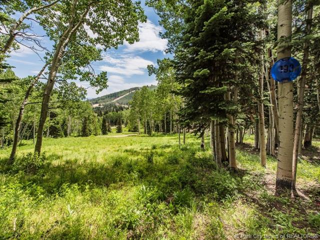 193 White Pine Canyon Road, Park City, UT 84060