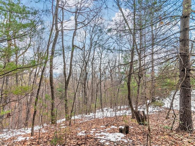 Beautiful wooded cul-de-sac lot in Kenmure Golf and Country Club.  .98 acres with winter views but may  have year round views when cleared to build.  Would make a wonderful homesite for your dream home.