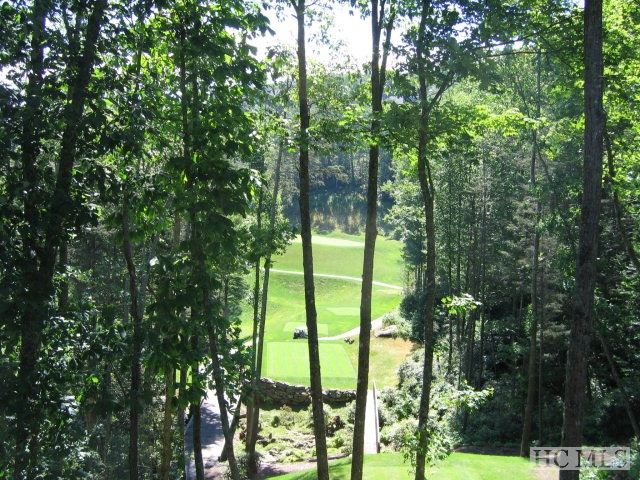 Home-site in a beautiful setting with exceptional mountain and golf course views! .82 +/- acres and is centrally located in Old Edwards Club at Highlands Cove.  Convenient to club amenities.  Now is the perfect time to build since building costs are at an all time low. Instant equity to be made.