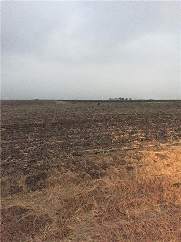 Great land for a homesite or to keep farming (currently farmland)!  A 40 acre tract with 880 feet of road frontage and is approx 1600 feet long.  Some rolling hills and plenty of room for home building.  Great Granger schools and VERY close to the lake!  Come build your dream home or get some farm land