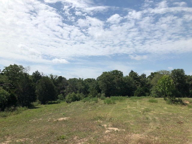Wonderful 20 acre tract of land with meadows, trees, partial fence less than 5 miles from town.  20 acres of privacy with lots of options to locate your home.  Electric line and Lee County WSC water line run to edge of property.