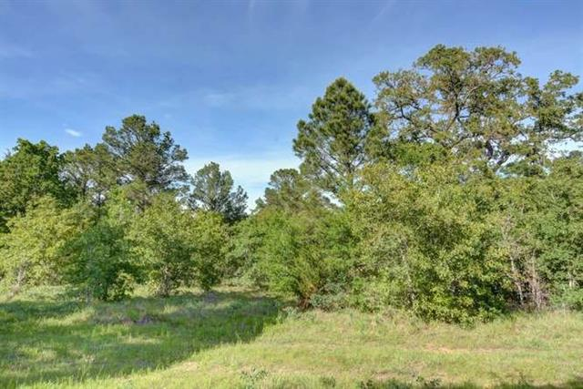 60 acres are being offered for sale.  Seller will consider selling in smaller tracts, minimum 15 acres. Gate is locked call agent for combo.  Easy commute to Austin or Houston.  Property is approximately 5 miles from Highway 290. Large mature Oak and Pine trees.   Wildlife are abundant. Beautiful peaceful property ready for your dream home.