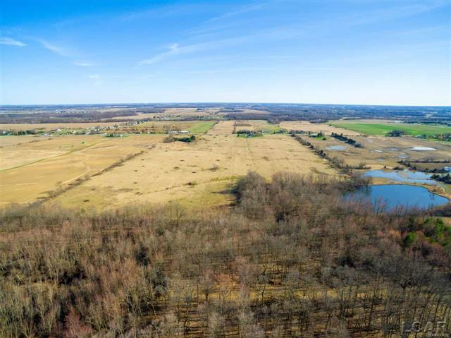 Vacant land per tax records 78.84 acres around 15 acres of woods with a pond.  great for the outdoors person with a pond and woods great for wild life of many types. just outside of the Adrian City limits   enjoy this tranquil setting