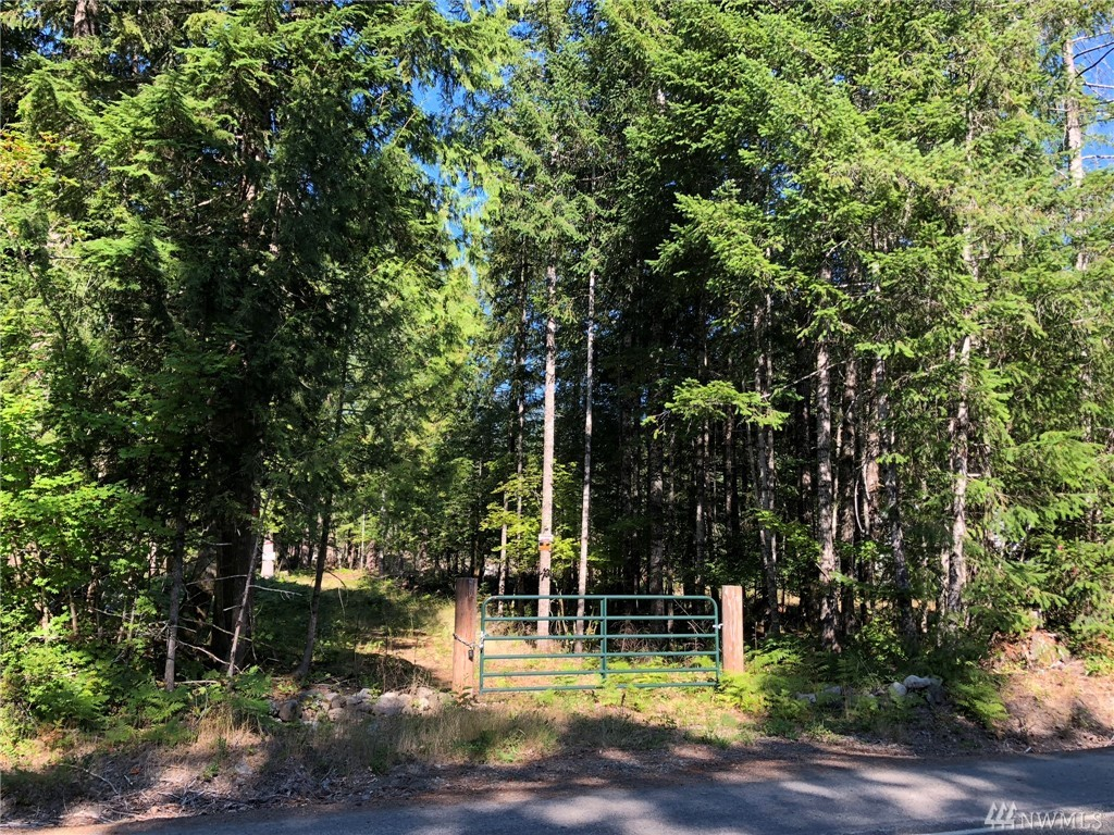 READY TO GO! 1.1 acre Cannon Rd building site. mature fir and cedar trees. Spacious 1.1 acre lot includes security gate, driveway and a cleared building site near Butter Creek. Drilled well. Converted bus on site included at no additional cost in sale, as owner is out of state. Keep it or sell it -- title to be transferred at closing. Endless recreation opportunities with proximity to Mt Rainier Nat'l Park, White Pass Ski Resort, and Gifford Pinchot Nat'l Forest!