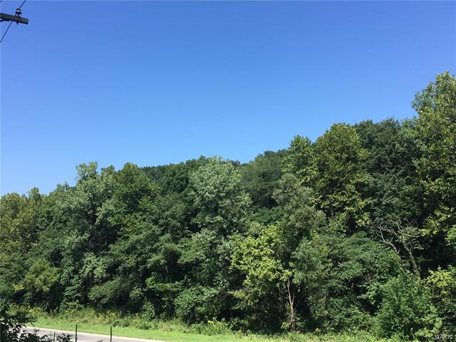 0 Walshville Trail, Hillsboro, IL 62049
