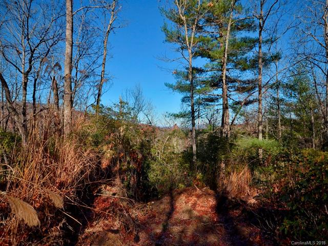 Wooded lots can be cleared for you dream house. Includes lots 13-15, 30 and 31.  Additional Lots also for purchase.