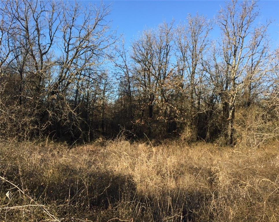 Lot 5 Black Hawk Trail, Nemo, TX 76070