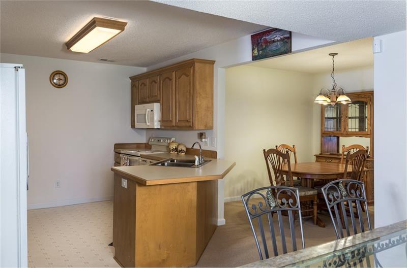Terrace Level Kitchen Area