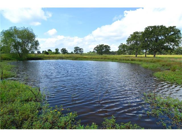 Gorgeous Land & Great Location! ~ 56.22 acres with great mixture of Coastal/Bahia pastures, scattered oaks in front & heavily wooded in back portion. Ponds on property were formerly stocked. Improvements include shed & corral. Electric pole w/o meter in perfect place for future home site which is surrounded by grove of oak trees on highest part of acreage. AG Exempt. Partial flood plain in front per FEMA, drains quickly per Seller. Property within 1 hour of Austin & 2 hours from Houston & San Antonio.