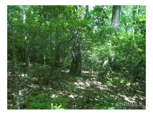 Priced to sell and SELLER IS MOTIVATED!!  Rugged and beautiful Nubbins Nob - good building site close to road/but not too close-very easy access-perfect walk-out basement building site-nice rock out cropping on lot below homesite - 750 sq ft minimum size.