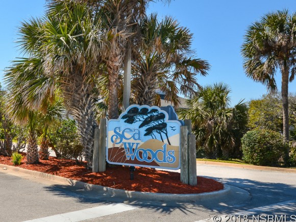 4285 SEA MIST DR 4285, New Smyrna Beach, FL 32169
