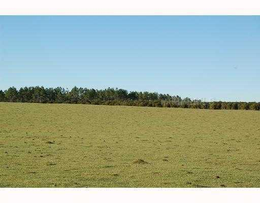 FRAZEE HILL LOT A, DADE CITY, FL 33523