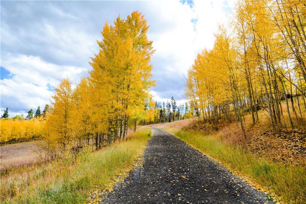 Enjoy this wonderful seasonal aspen approach.
