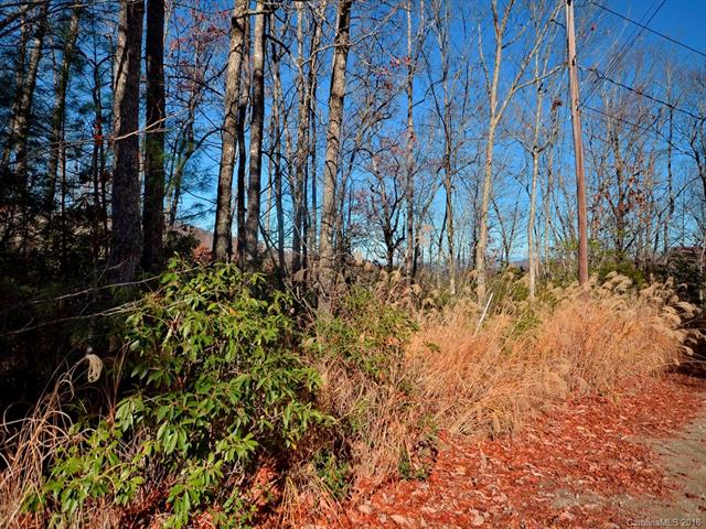 Wooded lots can be cleared to build your dream home. Includes lots 16-18 & 32 with additional lots available for purchase.