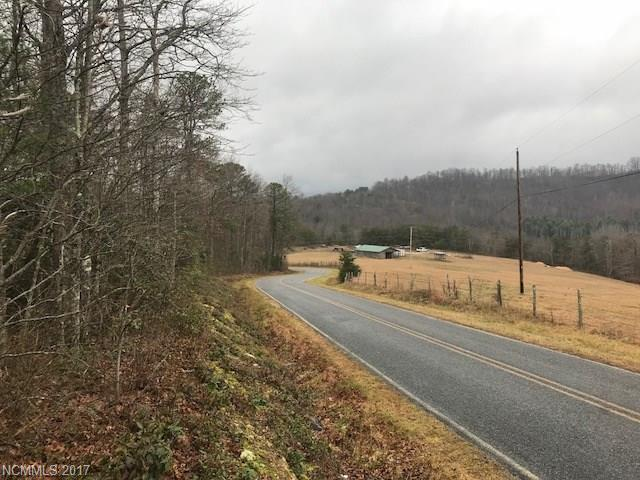 Great laying land with no restrictions! May be subdivided. Paved road frontage with beautiful pastoral views. Lots of rhododendron and mountain laurel with mixed mature hardwoods. A rare find in Henderson County at only $117,500!