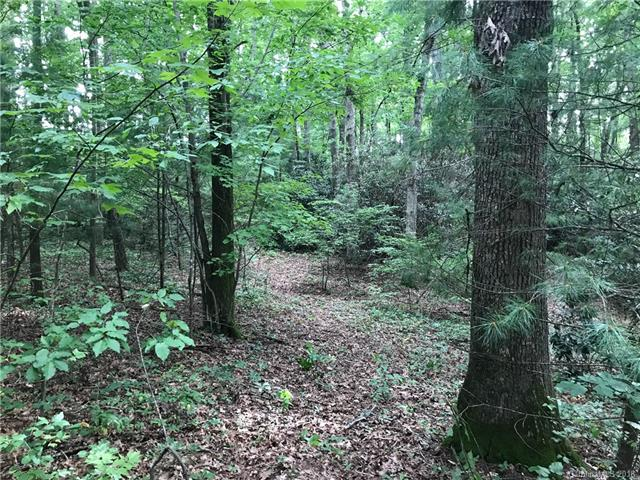 Wooded acre close to shops and restaurants. Will need well and septic installed. Large Hardwoods and gently sloping.