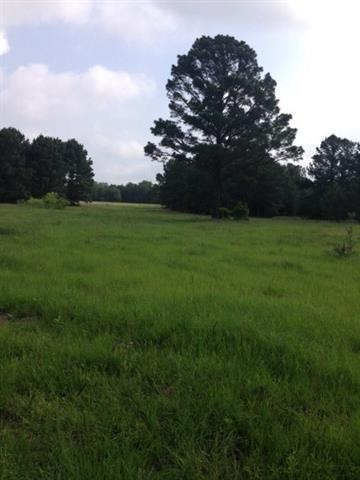 This is a 54 acre tract that the seller will sell smaller tracts out of. They are negotiable on any size tract no less than 15 acres. Mostly wooded and has the potential to be a gorgeous piece of property! Huge mature oaks and pines! Property is partially fenced. Come build your dream home in the middle of this piece of paradise! Great large property just outside of Bastrop and Smithville. Enjoy these small town restaurants and the Colorado River!