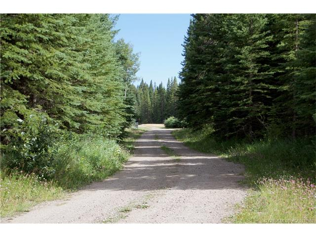 5439 Township Road 323A, Rural Mountain View County, AB T0M 1X0