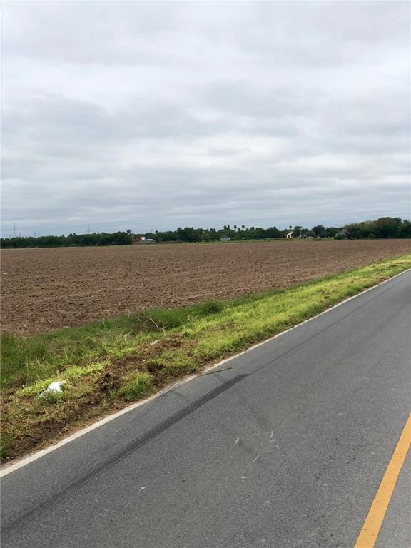 1 S Whalen Road, Donna, TX 78537
