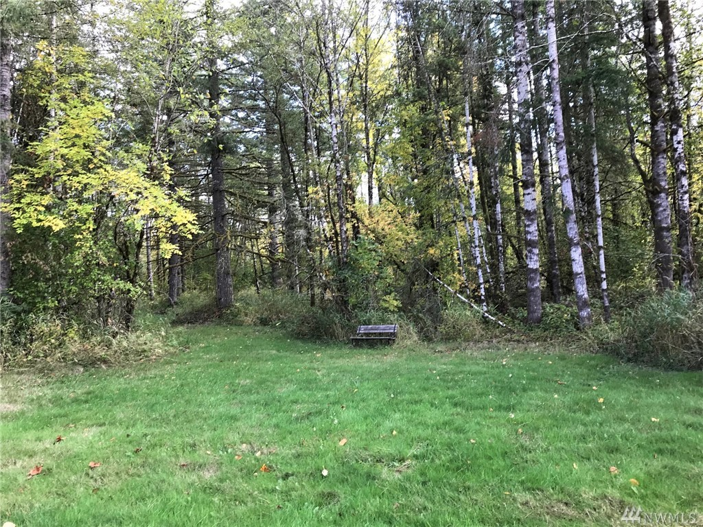 Location is perfect for those wanting to be close to I-5  Chehalis/Centralia area. Surveyed 20 +/- acres with a mixture of trees, brush, pasture, multiple building sites, pond with all the privacy you'd desire.  Electricity on property edge.  Short drive to Mayfield and Riffe Lakes.Lots of alder & some fir trees.