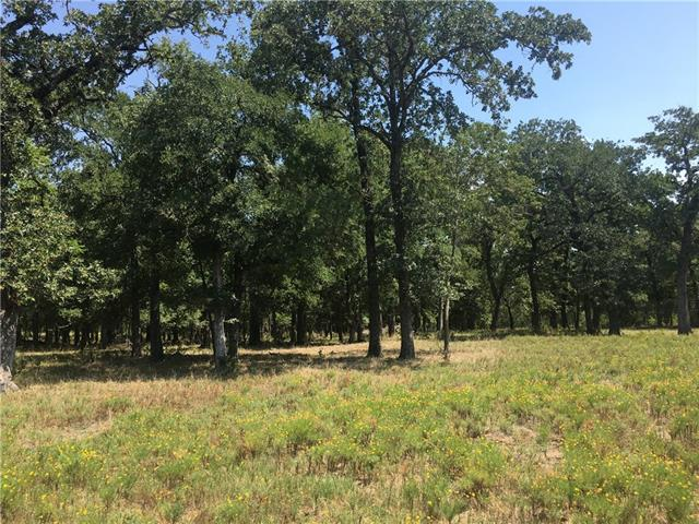 This beautifully wooded  50 acres is being sold off of neighboring 1200 acre ranch.  This parcel was used for goats and  is totally high fenced.  Tank in back north west corner. 85% of Property was cleared of all under bush.