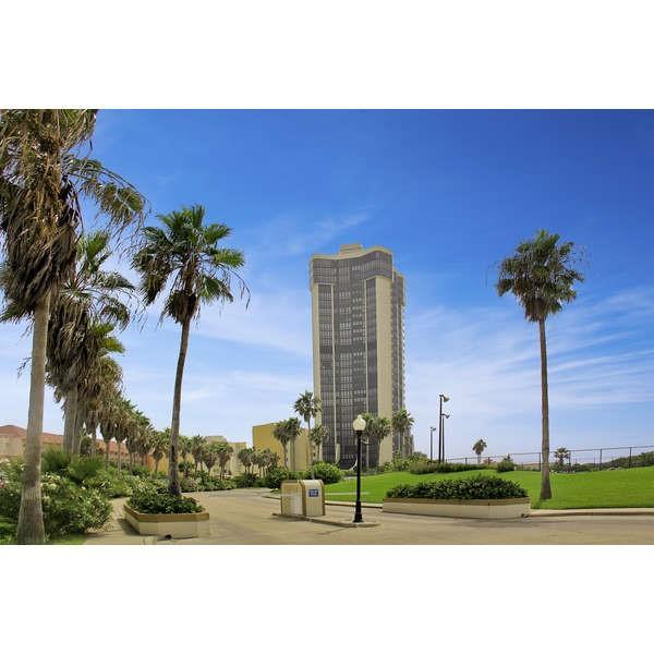 334 Padre Boulevard 405, South Padre Island, TX 78597