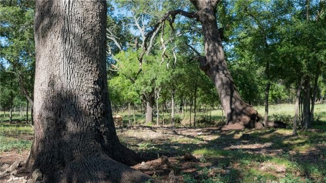 25+- acre South San Gabriel Riverfront property with both sides of river bank (see survey). Cleared of most cedars. Nice Live Oak groves and scattered Elm trees. Great future home site.