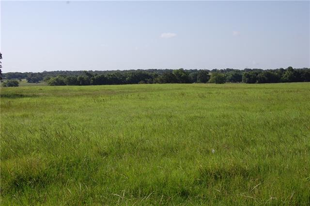 Come take a look at this beautiful rolling 193ac. w/ creek running through middle of property.  Nice Coastal and Bahia grasses w/ pond perfect your cattle/livestock and great home sites.  Artesian water and drilled well on property.  Mostly open w/ some scattered trees.  Gorgeous elevation changes throughout.  Agriculture Exemption currently in place.  Come take a look today!!