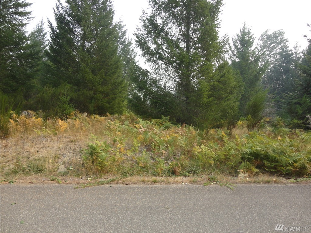Nice building lot in small development of Trails End. Water and power at the street.  Community riverfront picnic area with firepit.  Beautiful views of Tatoosh range and Cascade foothills. Close to Mt. Rainier National Park, White Pass Ski Area, and Gifford Pinchot National Forest for year round recreation and wildlife viewing.  Combine with other contiguous lots on Cottonwood Lane or Jack Fir Ct for a larger parcel and more privacy.  Nice spot for year round or vacation living.