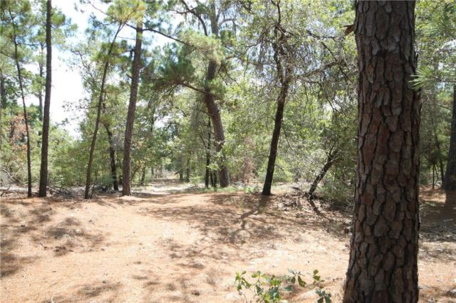 Whispering Pines!  28.16 Acres in beautiful Bastrop!  This property is covered in big majestic loblolly pine trees.  Wonderful recreational property or to build your forever home!  Road frontage along Hwy. 21.  This is a nature paradise with wildlife exemption in place!  Don't miss this opportunity.  Close to all the Bastrop downtown action, local restaurants, golfing and beautiful Lake Bastrop!