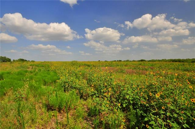 Dry Creek has generally flat to rolling terrain with less than 70 feet of elevation change, yet offers multiple locations with views of downtown Austin. Currently used for agriculture with approximately 100 acres of cultivated fields and 295 acres of rangeland. There are 5 stock tanks on the tract with the largest being just under 2 acres in size. A tributary of Dry Creek bisects the southern potion of the property.