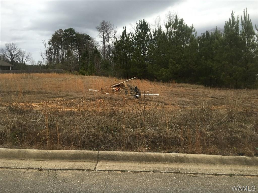 Great opportunity! Will build to suit or you can purchase the lot and have your builder take care if the rest of it for you.  CALL TODAY and prepare to move into your home in 2018!