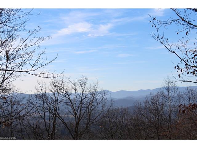 Incredible westerly views in a gorgeous gated community less than 10 minutes to Main Street Hendersonville, NC.   If you're looking to build your dream home this is the lot w/million dollar views.  Somersby Park is a magnificent 160-acre private mountain community located adjacent to Jump Off Rock in Laurel Park.  Somersby Park features hiking trails, waterfalls, creek, picnic areas, stocked fishing ponds, community park with pavilion.  City water, community sewer, and natural gas!!!