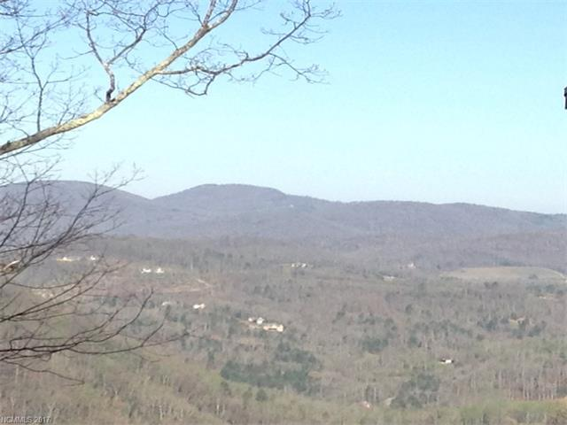 This lot has 380' of road frontage. Good mountain views year round with removal of some trees. Several waterfalls to be seen on the way to this lot on Little Creek Rd. This property borders Chimney Rock State Park. A great place to build a vacation getaway.