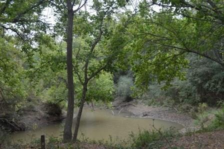 TBD County Road 671, Teague, TX 75860