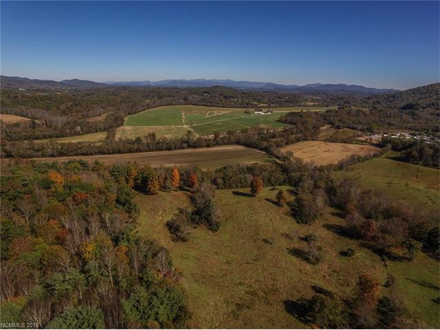 The last large scale development tract left in the Asheville region. Gentle to rolling pasture, moderate topo w/panoramic views & 1.5 mi of French Broad River frontage make the perfect place for a residential development. Located between Asheville, Brevard & Hendersonville-it combines perfect on-site lifestyle community amenities w/easy access to healthcare, city services & vibrant arts communities. Master plan for a comm. that was previously considered is avail. Also listed under MLS#3125327.