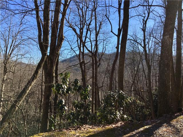 Wonderful wooded building site with 2 creeks. Private, yet not remote just 145' off a paved state maintained road. Park in front of red gate, not in gravel drive please! This is the perfect setting for buyers seeking a site for a private mountain home with easy access. The 2 creeks will help keep the home cool in the summer due to the tree canopy provided by the deciduous trees. All this, plus and added bonus! There is a recently remodeled manufactured home at far back corner of the property (address is 59 Rudicil Rd) can be lived in, or possibly subdivide and sell it. The mobile home access is off Rudicil Dr. DO NOT drive past the parking area for the mobile home, it's private property. Owner financing. Call for viewing instructions, subject to lease until 4/23/19.