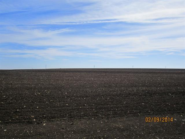 Great 82+ acres of Farmland . Great Location for Future Development...