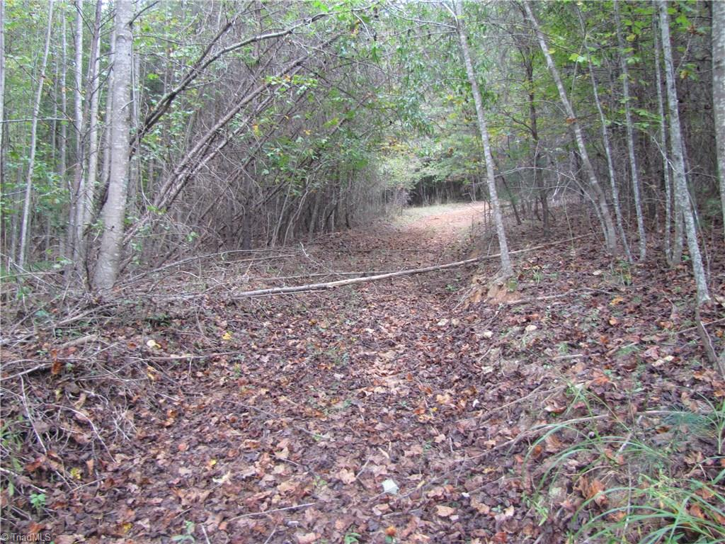 L-3290  Great 10.58 tract for hunting, four wheeling and  home site. Unrestricted. All wooded with road into property. Mostly hardwoods. Abundant wildlife. Over 600' of paved road frontage.  Nice rolling tract at an affordable price below tax value.