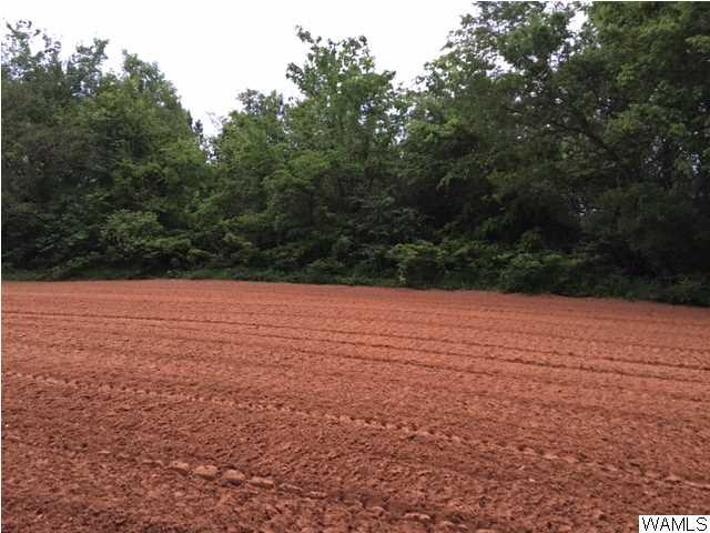 Close in -- only 10-15 minutes from town with a nice place to build a home or put a mobile home.  Per owner, power and water are available. Wooded 3.5 acres.