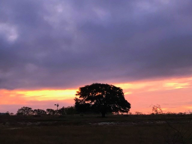 Come enjoy beautiful sunsets, peace and quiet and starry nights!  Build your dream home or just enjoy the hill country!  Pond that has held water year round frequently has ducks!  Property is fenced on 3 sides and ag exempt.  5, 10 and 20 acre tracts available!   5, 10 and 20 acre tracts available.  Also willing to customize to an acreage of your liking.  No known restrictions
